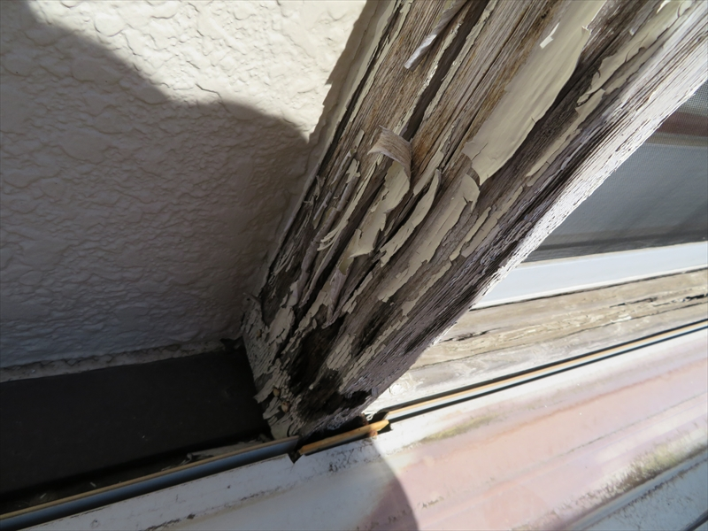 窓の木枠も塗装が剥がれてボロボロになっています。