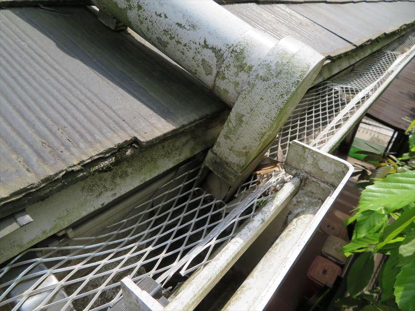 2階の雨樋から下屋根の雨樋に流す縦樋は、コケや汚れが付いていました。落ち葉よけネットを付けている箇所は問題がないのですが、縦樋の開口部に落ち葉が詰まっています。