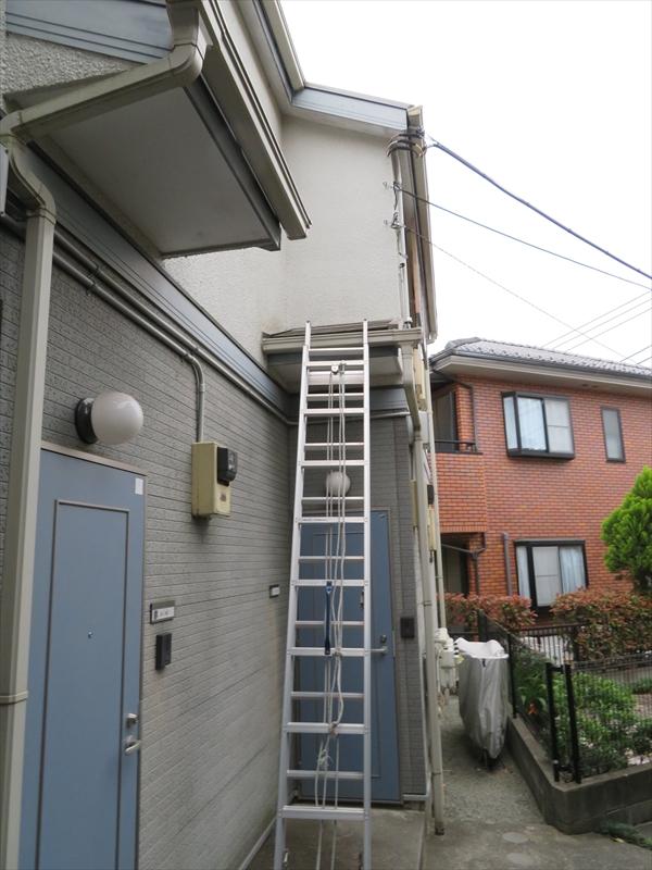 屋根にははしごを掛けて上がっています。