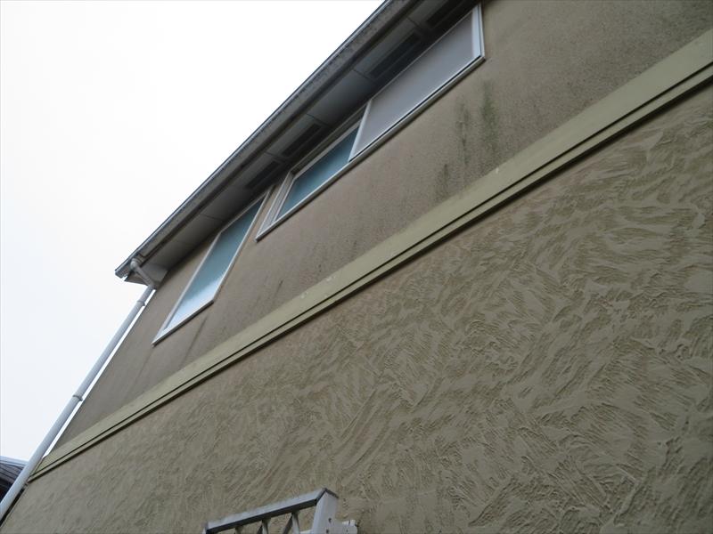 外壁には所々コケのような汚れがついていました。