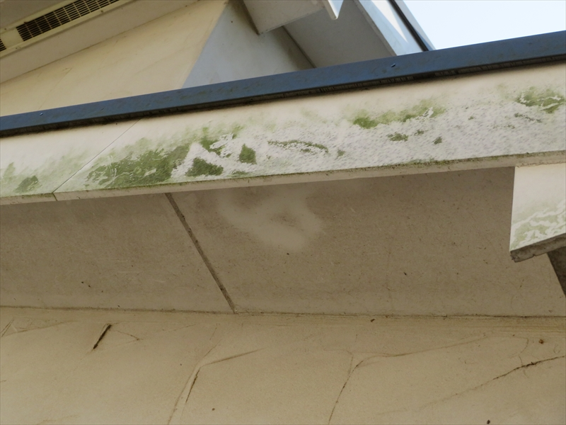 コケ汚れがあったのは破風板でした。ジョリパッドとは材質が違います。