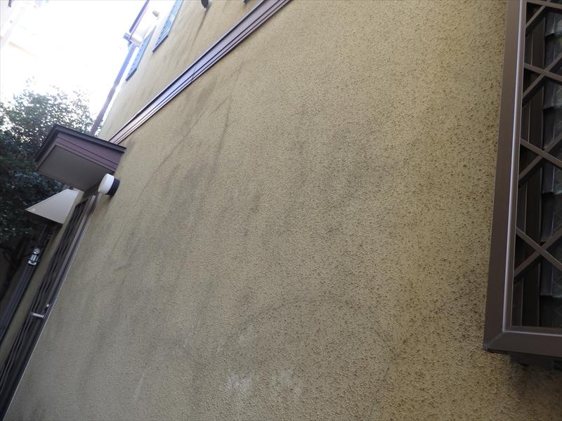 日当たりの悪い外壁を中心にコケ汚れがついています。