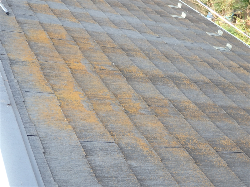 屋根には赤茶けたところがありました。