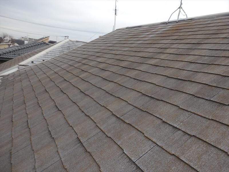 屋根は全体的に変色をしています。