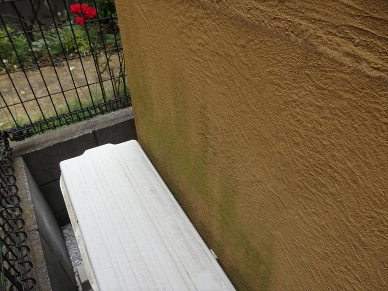 日当たりが悪い外壁部分に緑のコケ汚れがありました。