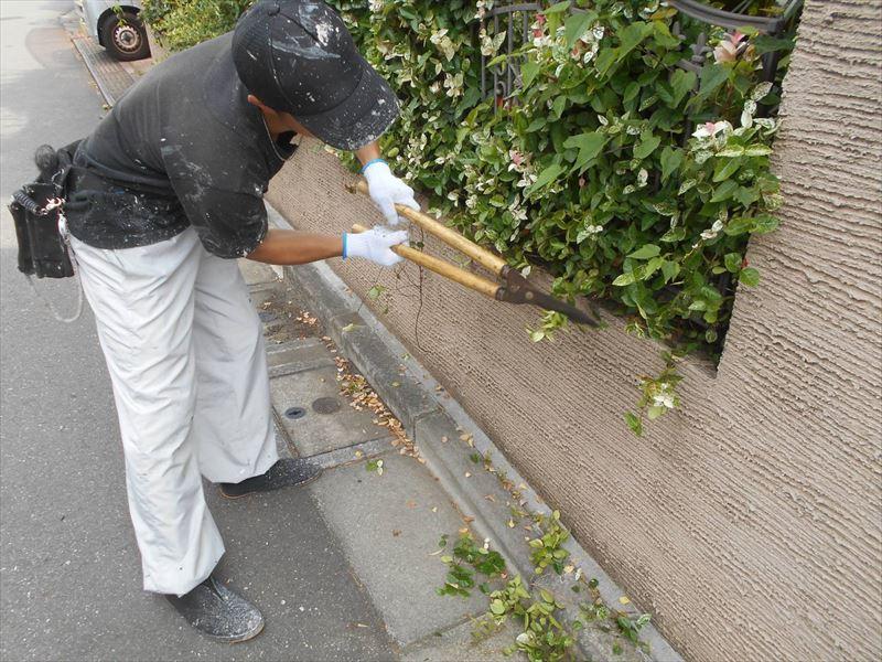 塀の塗装のため、お客様の許可をいただいて塗装の邪魔な植木を刈り取ります。