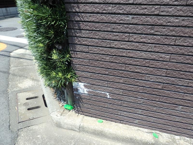 塀の外側は比較的きれいでした。白いものはタイルを支えるモルタル材から出るアクで、白華現象です。