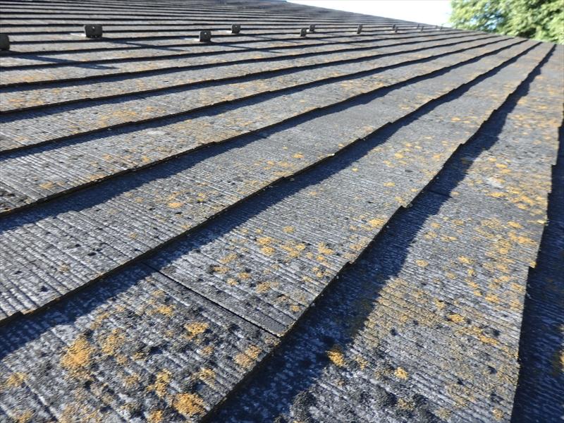 屋根に上ることで、ひび割れ・コケなど、詳しくわかります。