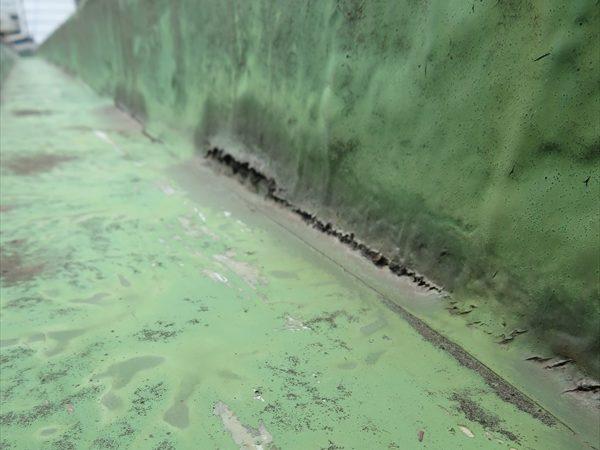 ベランダの内樋部分に防水の裂け目ができています。