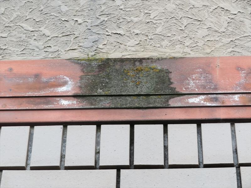 帯板部分は塗装の剥がれの他に、苔が生えていました。