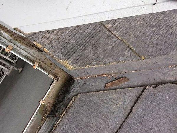 棟板金の交換の時に、しっかりと雨樋の中に折りこんだので、雨水が降ってくることはなくなります。