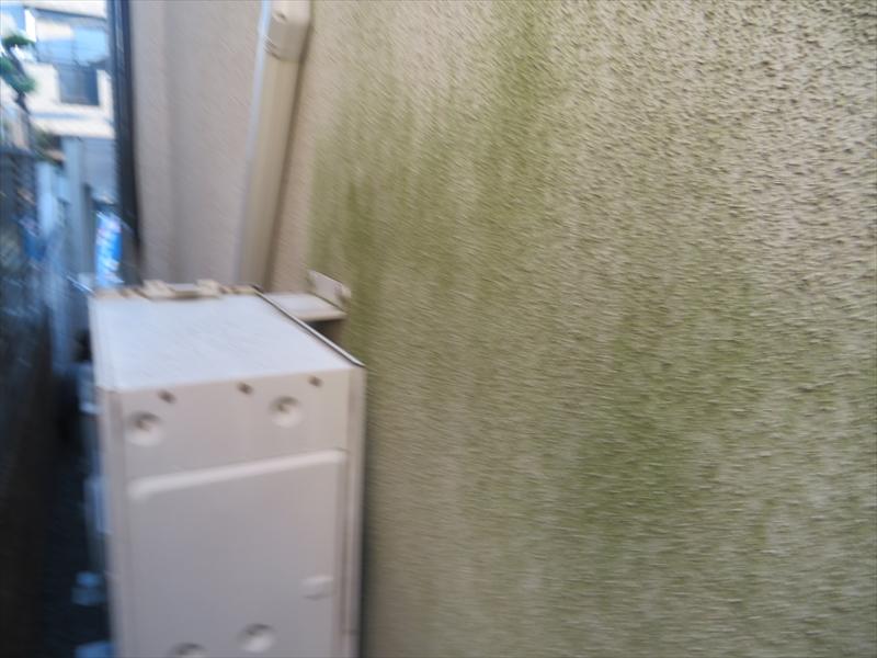 外壁の日当たりが悪い場所には苔汚れがついていました。