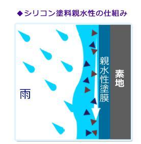 シリコン塗料親水性の仕組み