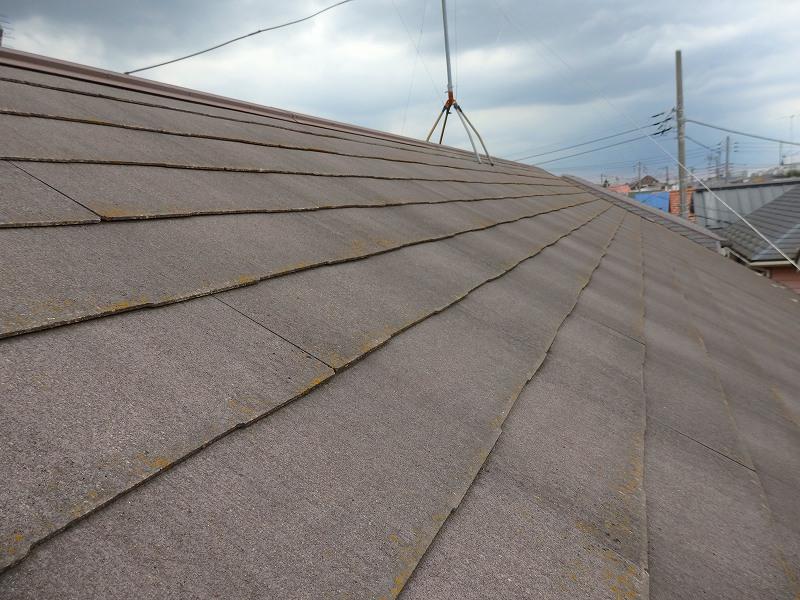屋根には苔が生えて色あせている箇所もありました。